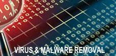 Virus malware removal